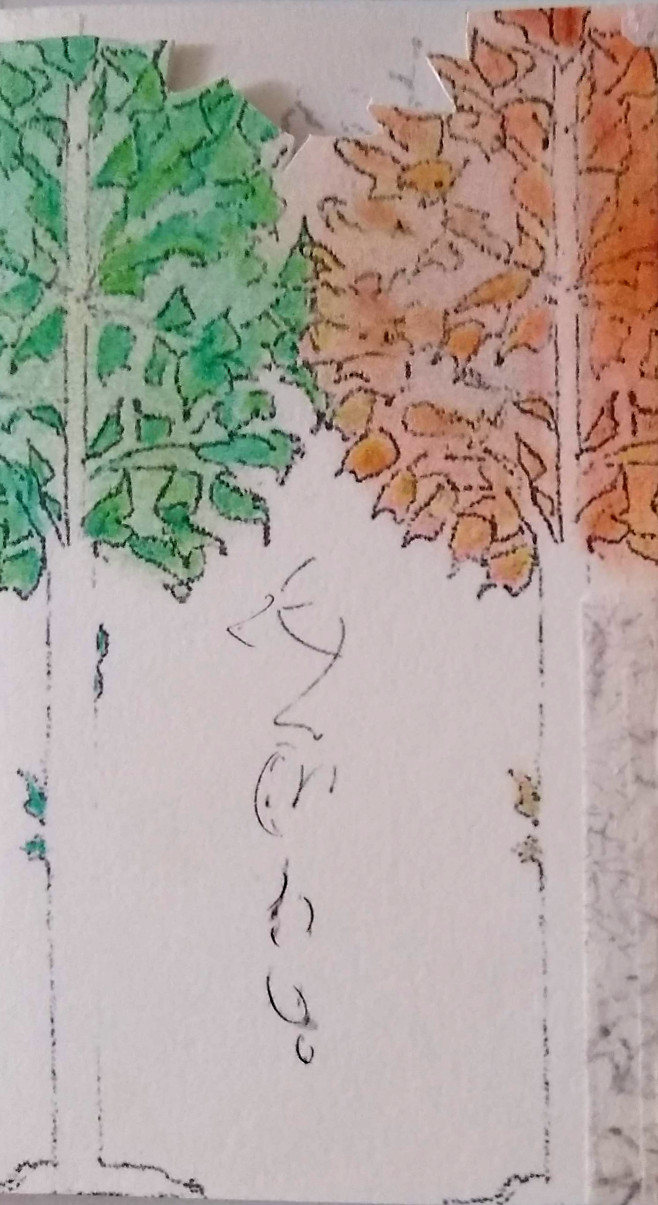 detail of tree drawing